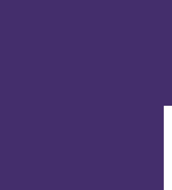 tête violette arbre montrant les connexions